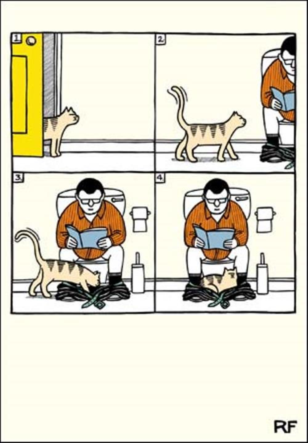 Funny Sleeping Cat Cartoon Cat Humour Greeting Card