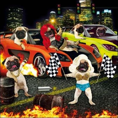 Boy Racers Square Greeting Card