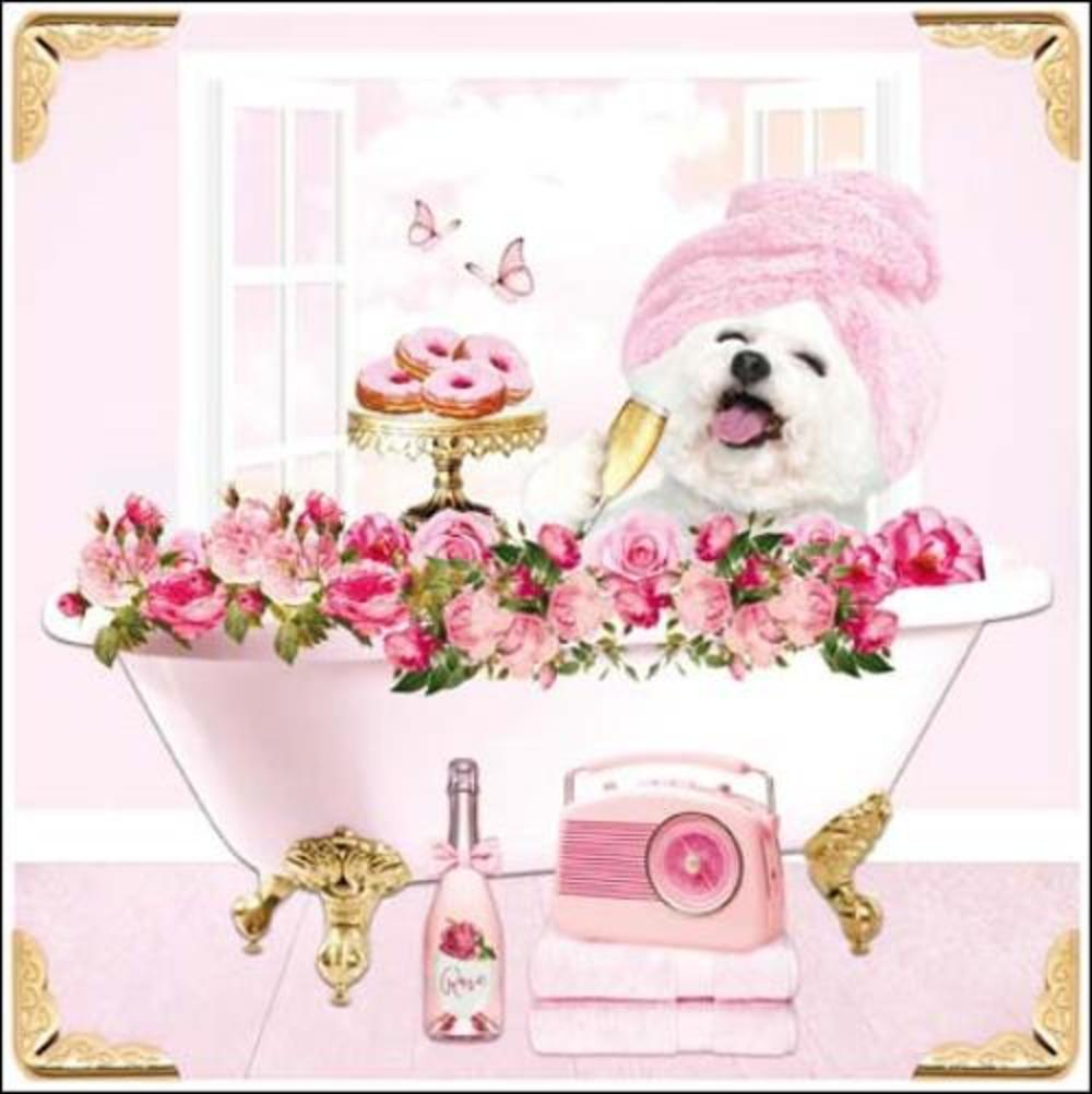 Perfect Day Square Greeting Card