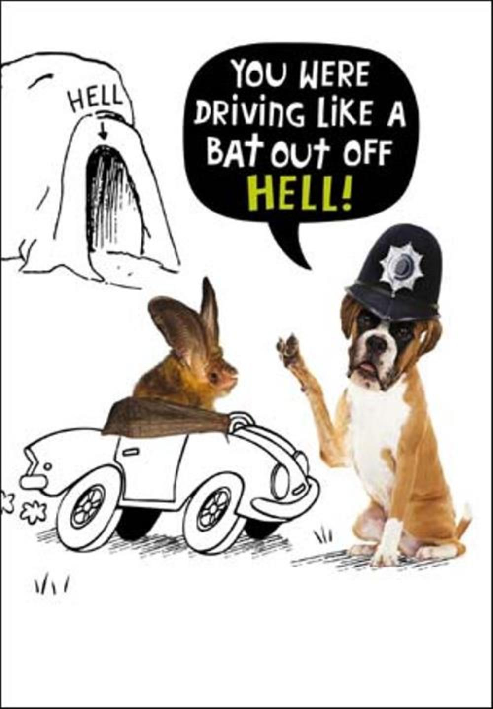 Like A Bat Out Of Hell Birthday Funny Birthday Card