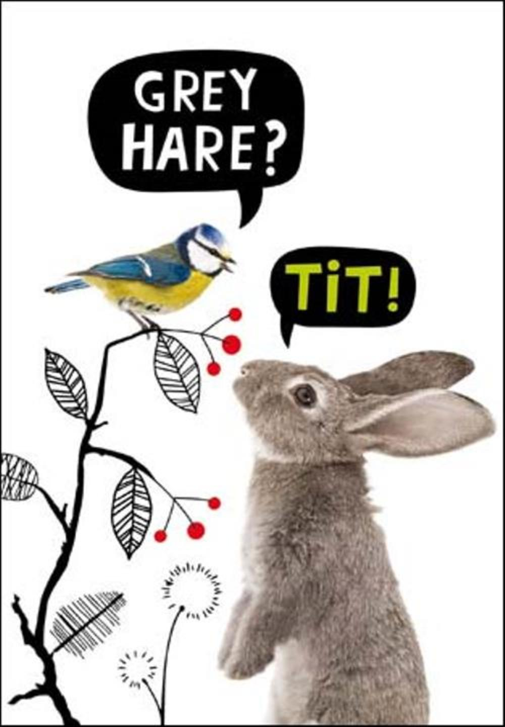 Grey Hare? Tit! Birthday Funny Birthday Card