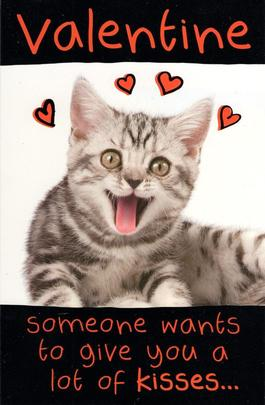 Funny Lots Of Kisses Kitten Valentine's Day Greeting Card