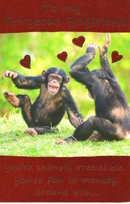 Funny Gorgeous Boyfriend Valentine's Day Greeting Card