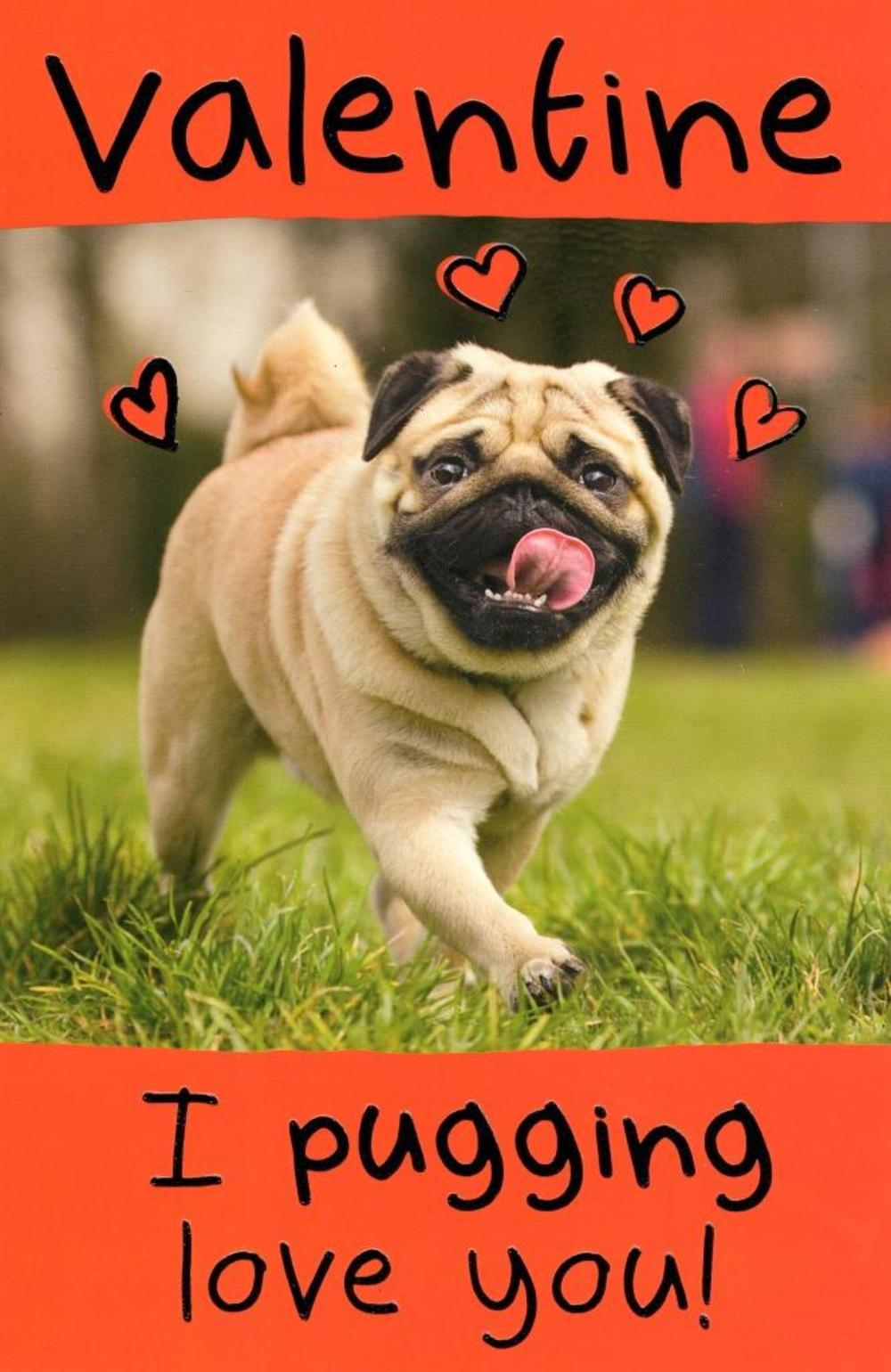 Funny I Pugging Love You Valentine's Day Greeting Card