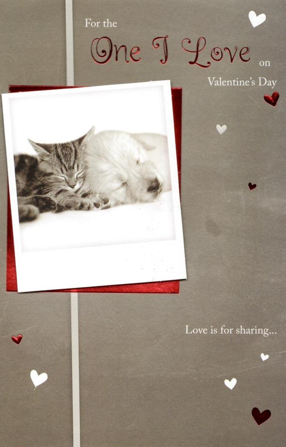 One I Love Cute Valentine's Day Greeting Card