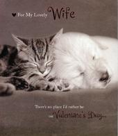 Wife Cute Kitten & Puppy Valentine's Day Greeting Card