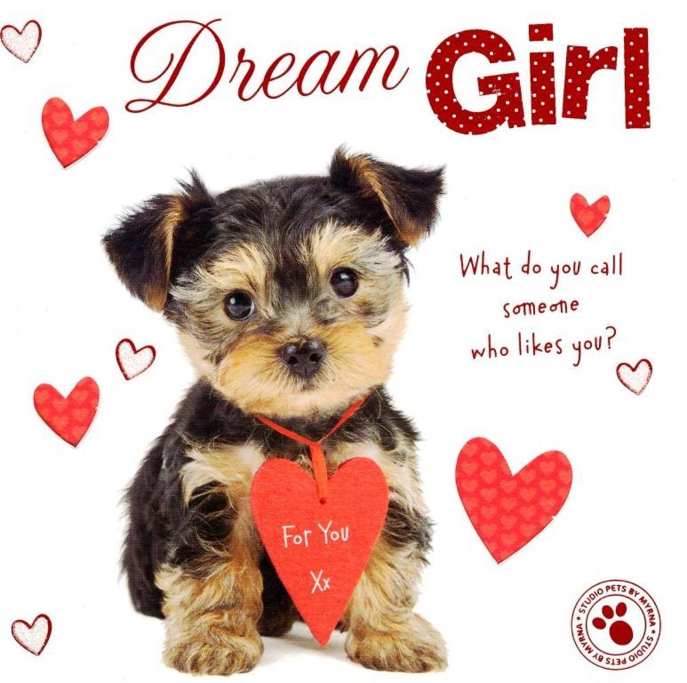 Dream Girl Cute Puppy Dog Valentine's Day Greeting Card