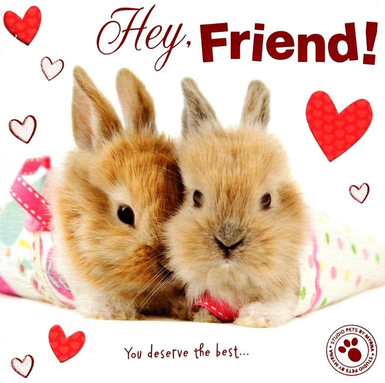 hey friend cute bunny hoppy valentine's day greeting card | cards, Ideas