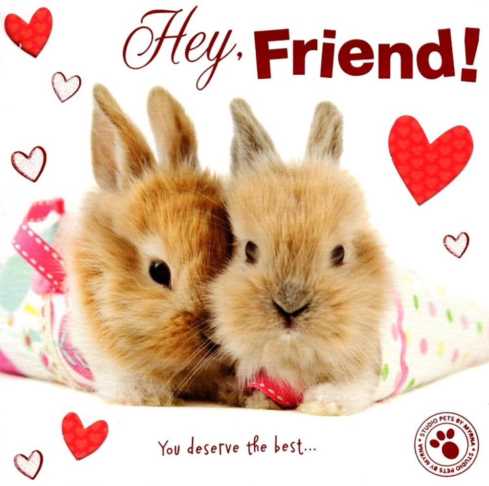 Hey Friend Cute Bunny Hoppy Valentines Day Greeting Card Cards