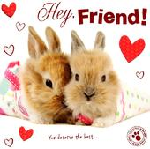 Hey Friend Cute Bunny Hoppy Valentine's Day Greeting Card
