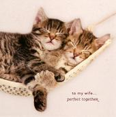Wife Perfect Together Valentine's Day Card
