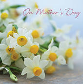 3D Holographic Daffodils Happy Mother's Day Card