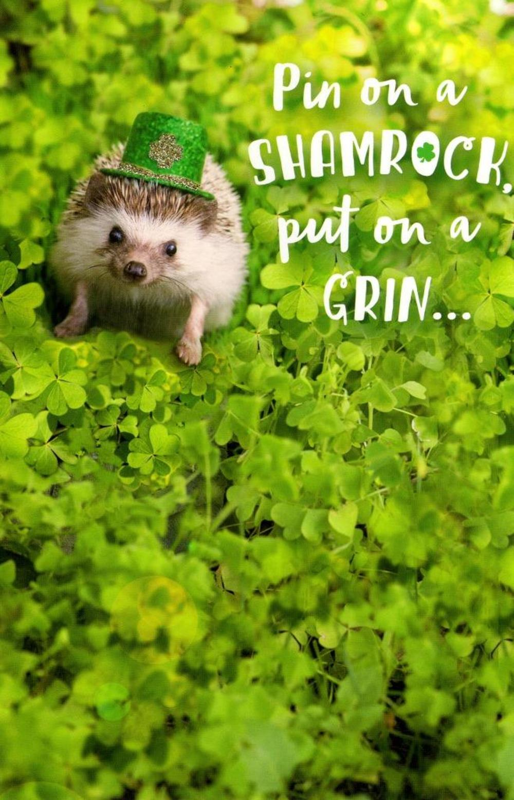 Cute Hedgehog St Patrick's Day Greeting Card