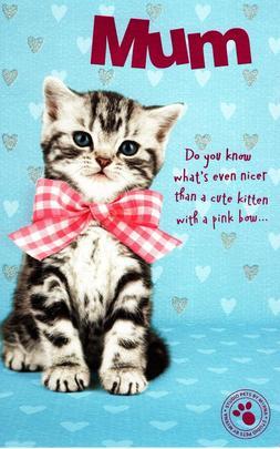 Cute Kitten Mum Happy Mother's Day Card