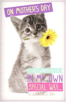 Kitten & Flower Happy Mother's Day Card