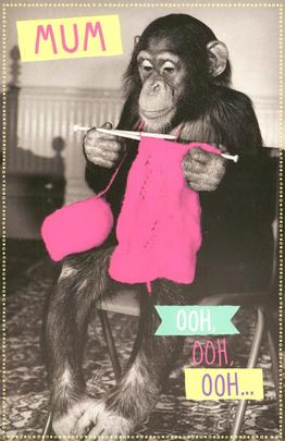 Funny Chimp Ooh Ooh Happy Mother's Day Card