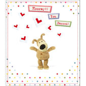 Boofle Hooray You Passed Greeting Card