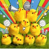 Pack of 5 Happy Easter Chicks Greeting Cards In Same Design