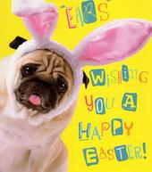 Ears Wishing You A Happy Easter Pug Dog Greeting Card