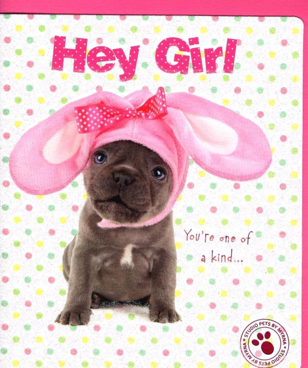 Hey Girl Cute Puppy Dog Studio Pets Easter Greeting Card