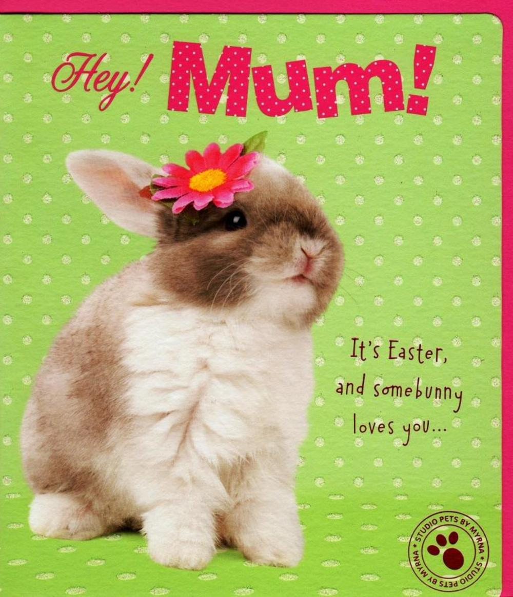 Hey Mum Easter Bunny Studio Pets Greeting Card