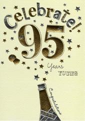 Happy 95th Birthday Foiled Greeting Card