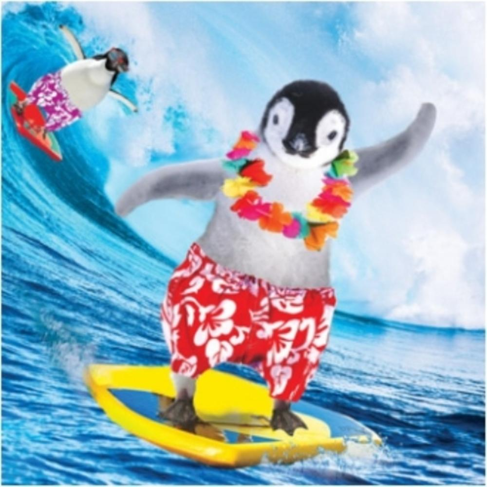 3D Holographic Penguin Surfing Birthday Card