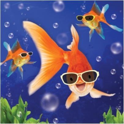 3D Holographic Goldfish Birthday Card