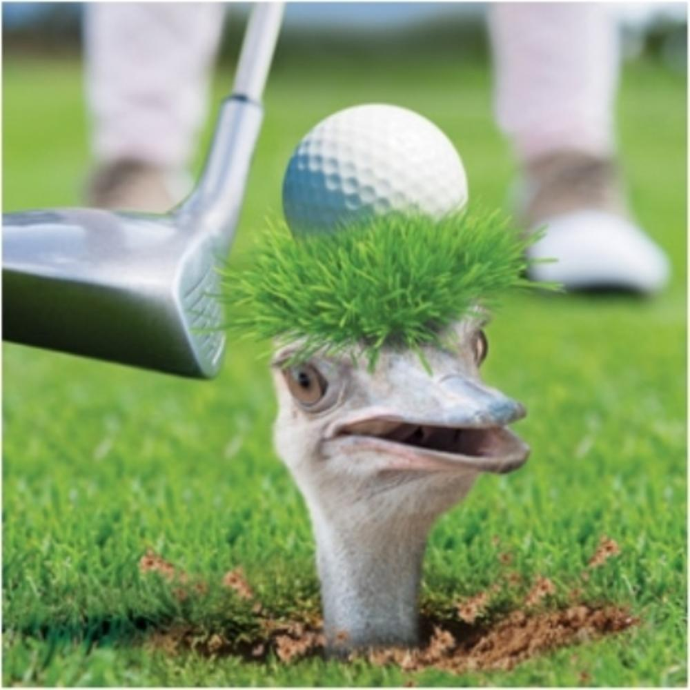 3D Holographic Golfing Ostrich Birthday Card