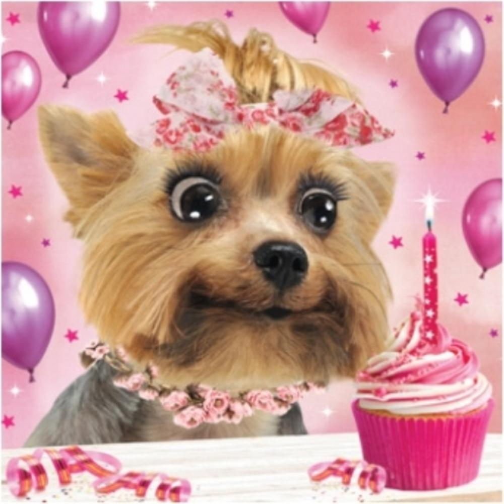 3D Holographic Yorkshire Terrier Birthday Card