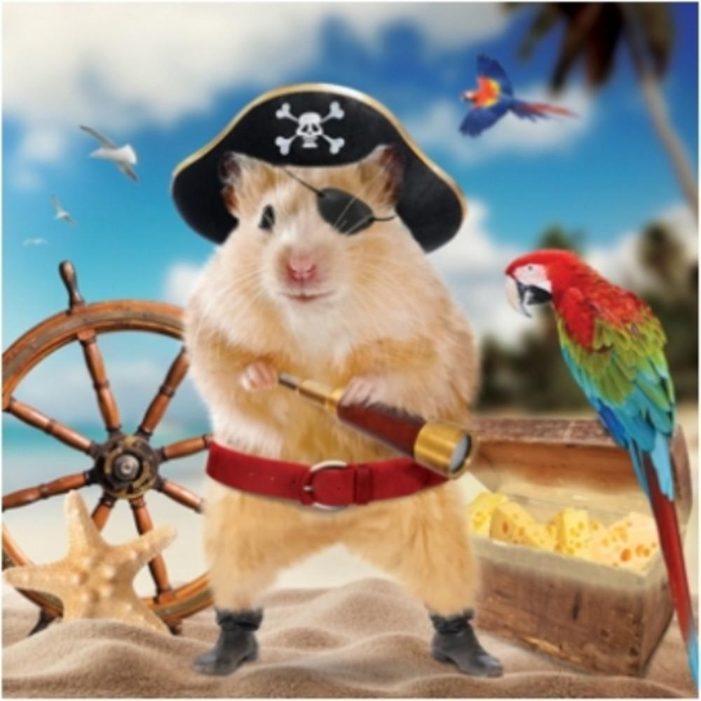 3D Holographic Pirate Hamster Birthday Card
