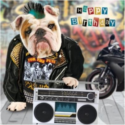 3D Holographic Bulldog Birthday Card