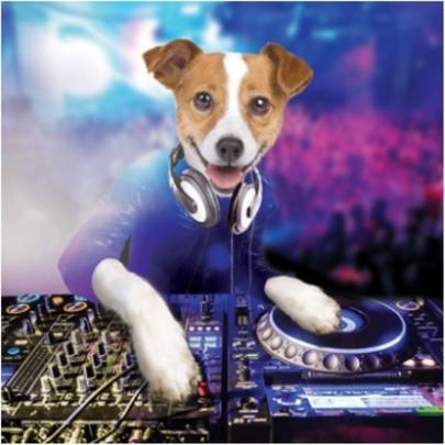 3D Holographic Dog DJ Birthday Card