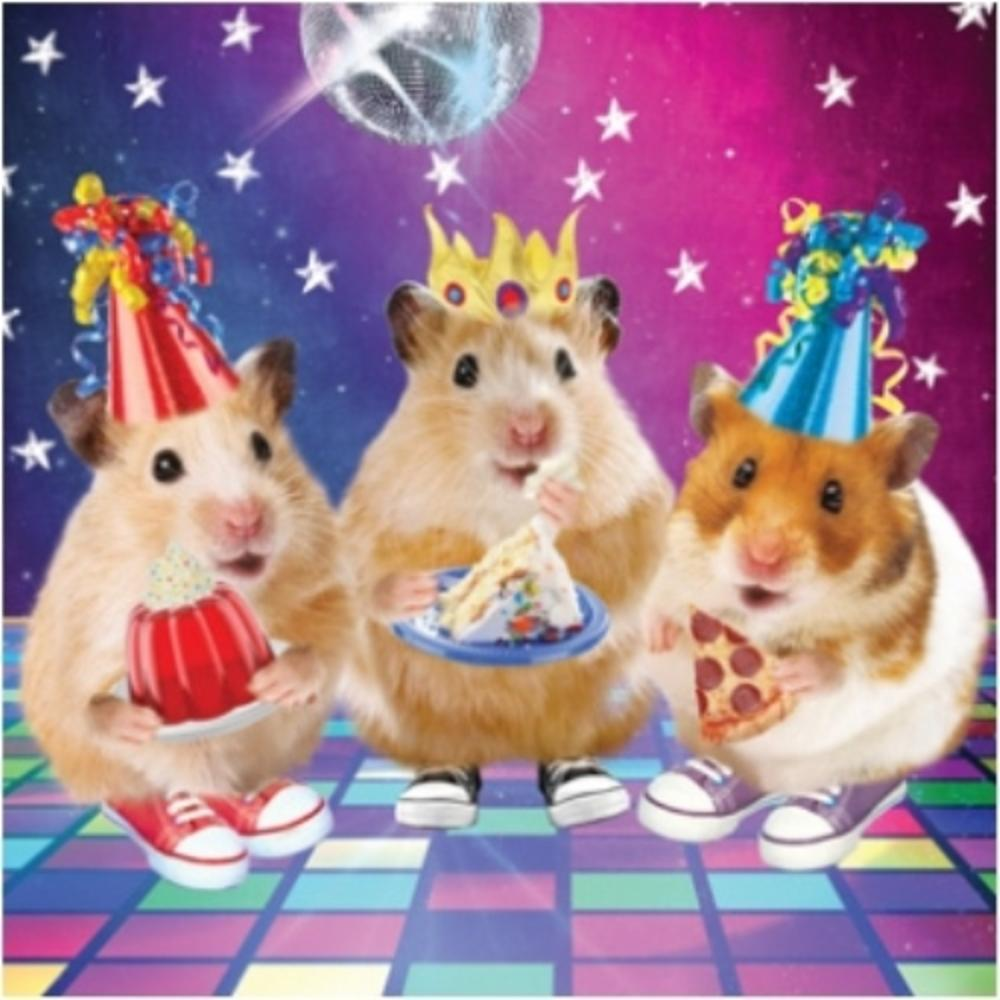 3D Holographic Hamster Disco Birthday Card