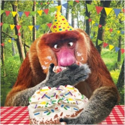 3D Holographic Naughty Baboon Birthday Card