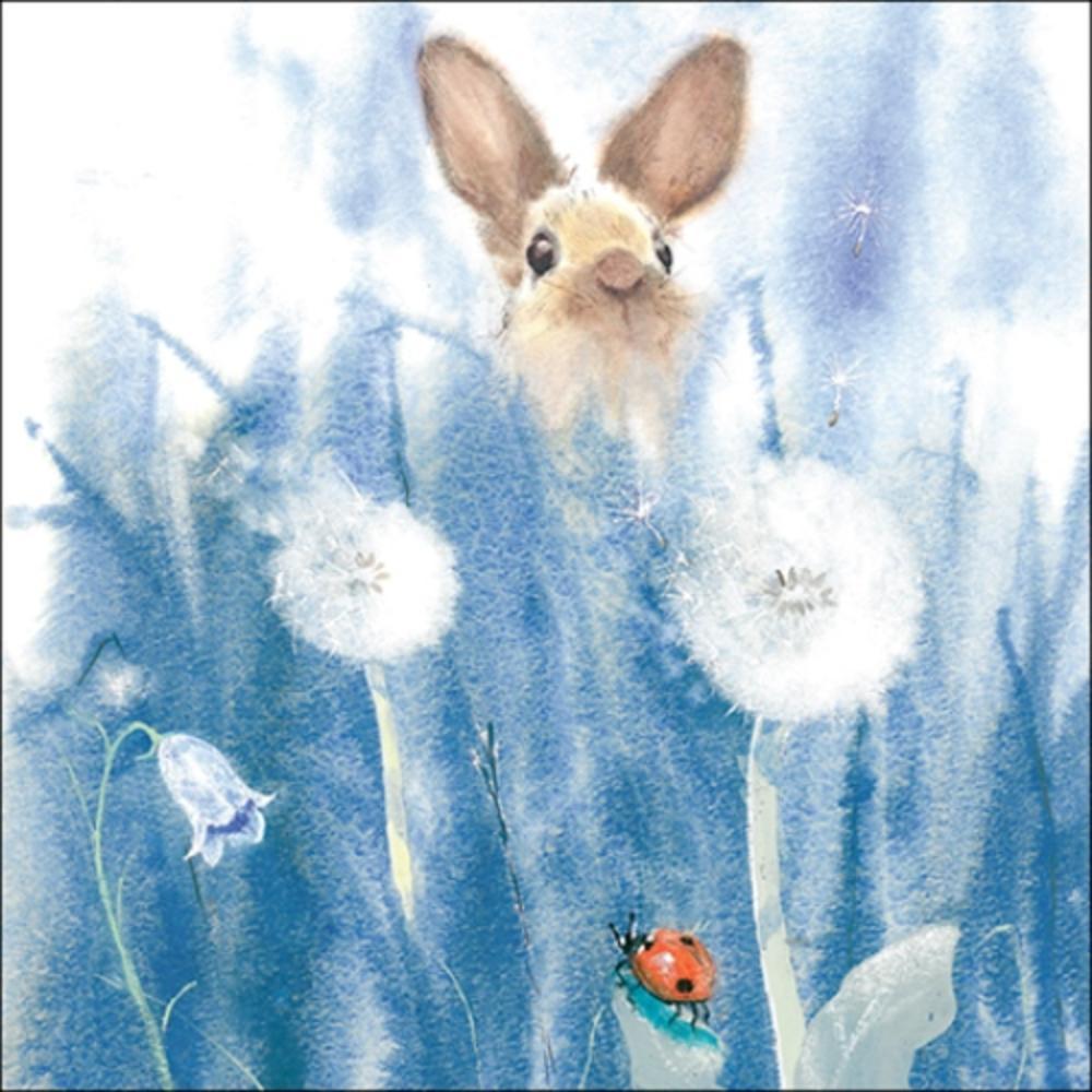Rabbit Animal Magic Square Art Greeting Card