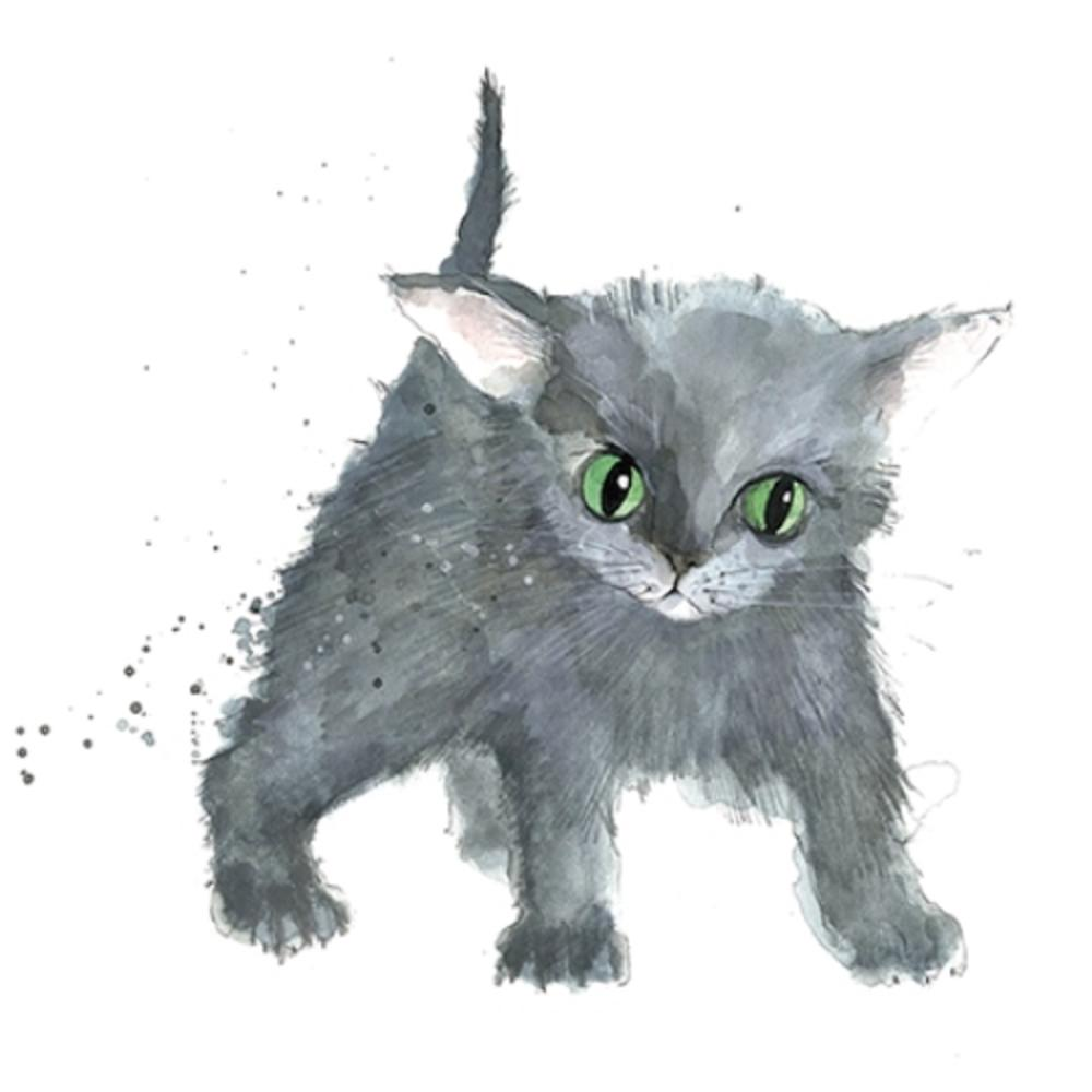 Grey Kitten Animal Magic Square Art Greeting Card