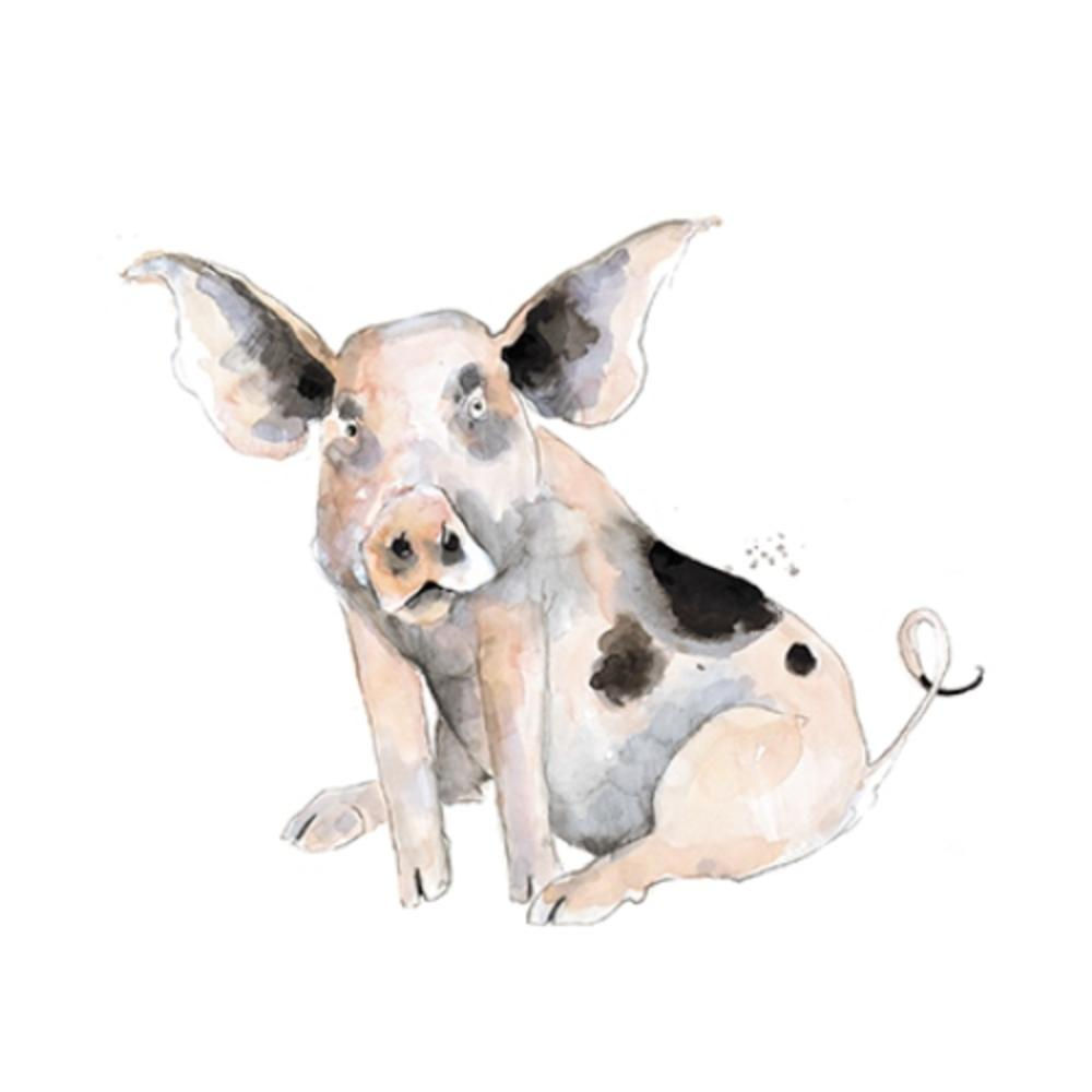 Old Spot Pig Animal Magic Square Art Greeting Card