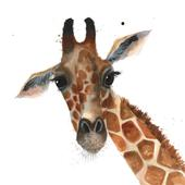 Giraffe Animal Magic Square Art Greeting Card