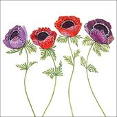 Anemones Wildlife Square Art Greeting Card