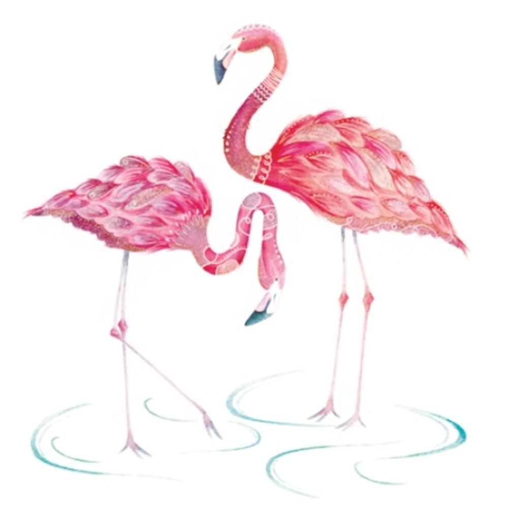 Flamingos Wildlife Square Art Greeting Card