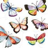 Butterflies Wildlife Square Art Greeting Card