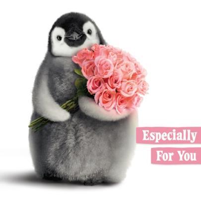 Avanti Cute Penguin Birthday Greeting Card