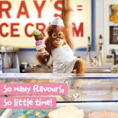 Avanti Icecream Flavours Birthday Greeting Card