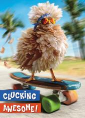 Avanti Clucking Awesome Birthday Greeting Card