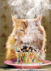 Avanti Another Blaze Of Glory Birthday Greeting Card