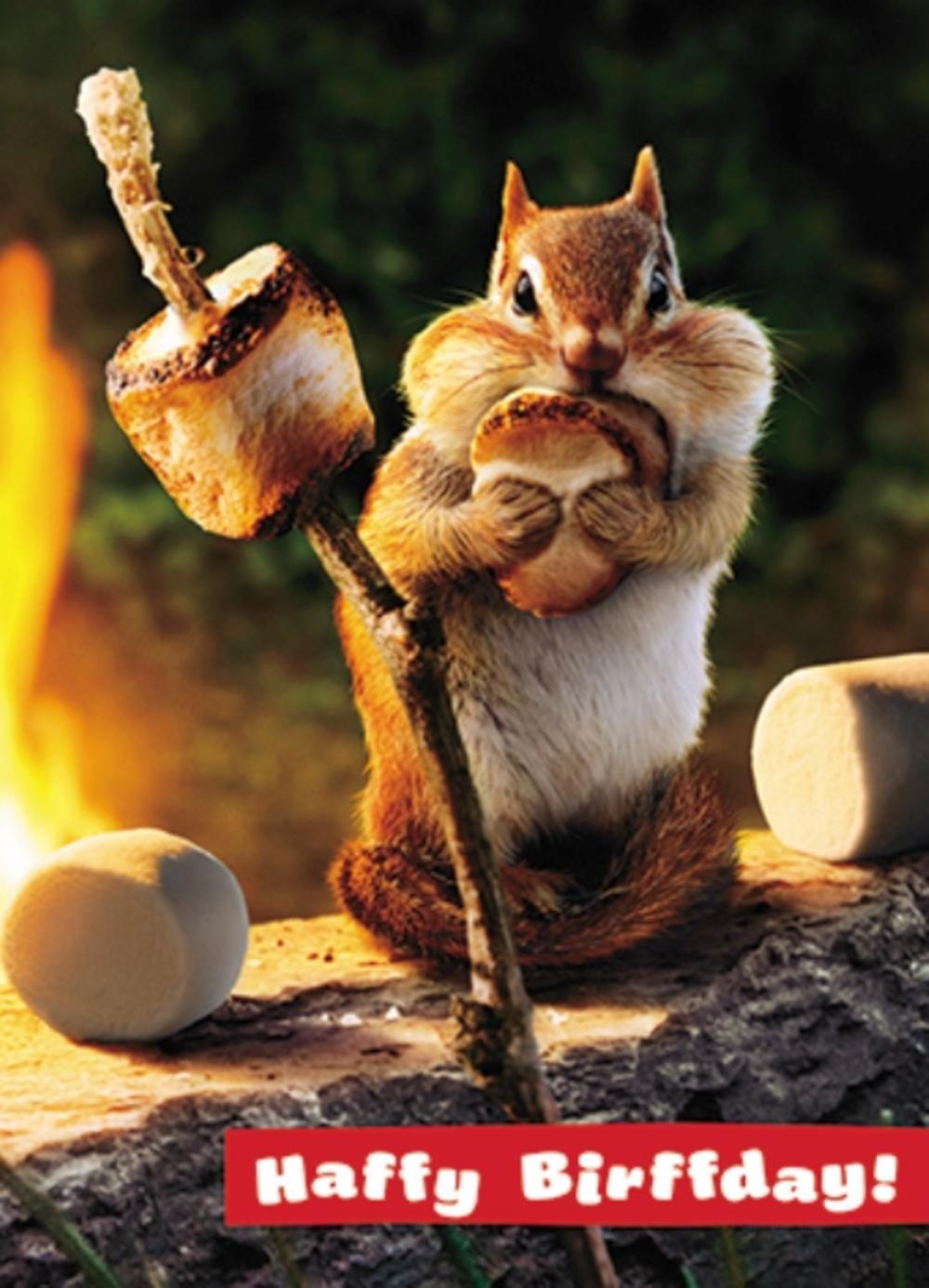 Avanti Haffy Birffday Marshmallow Birthday Greeting Card