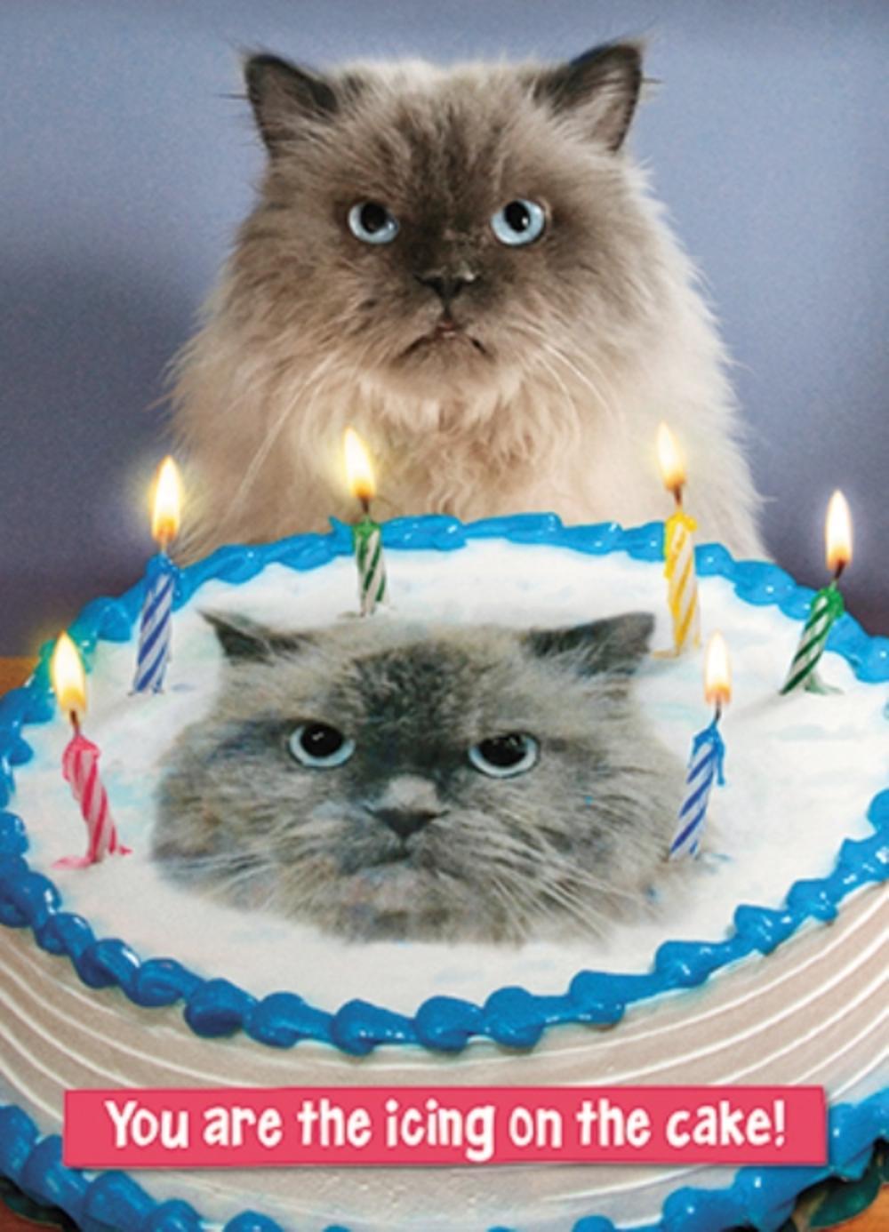 Avanti The Icing On The Cake Birthday Greeting Card