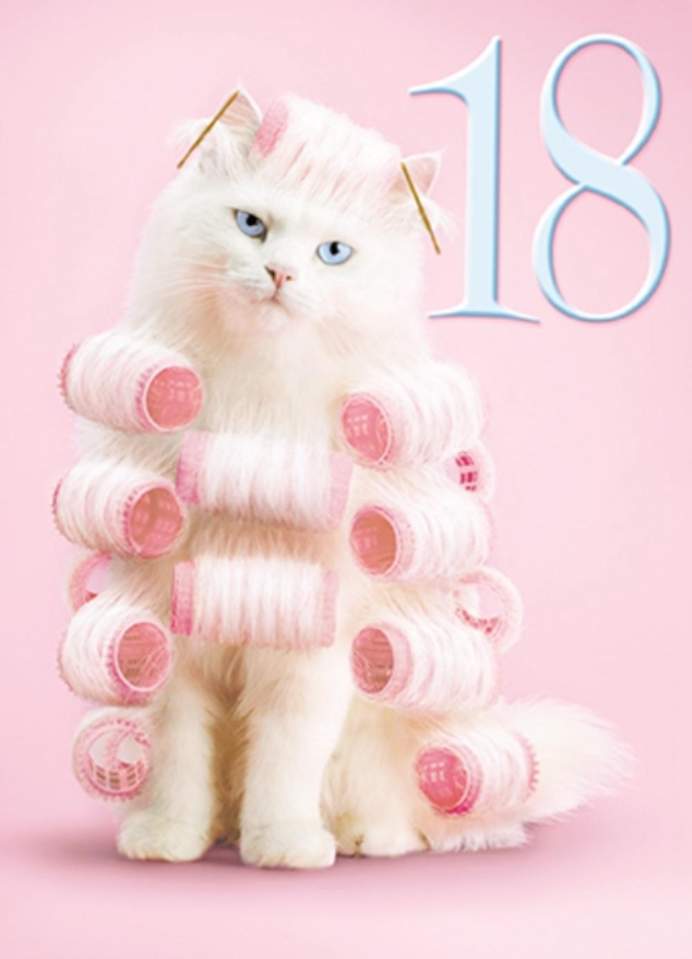 Avanti Female 18th Birthday Humour Greeting Card
