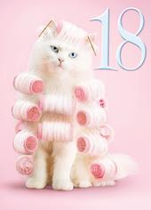 Avanti Female 18th Birthday Humour Greeting Card